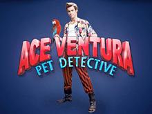 Спины в Ace Ventura